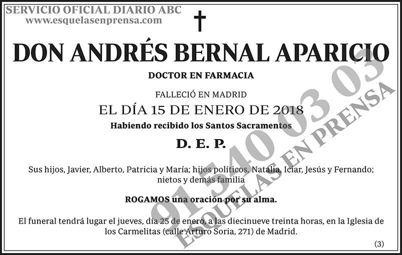 Andrés Bernal Aparicio